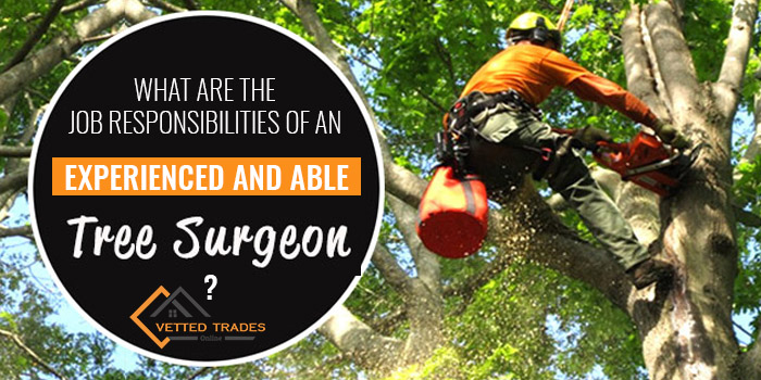 What are the job responsibilities of an experienced and able tree surgeon?